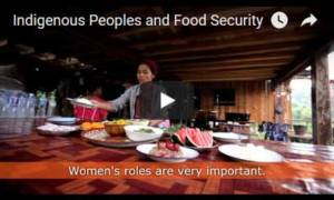 Digital Mixes food security video